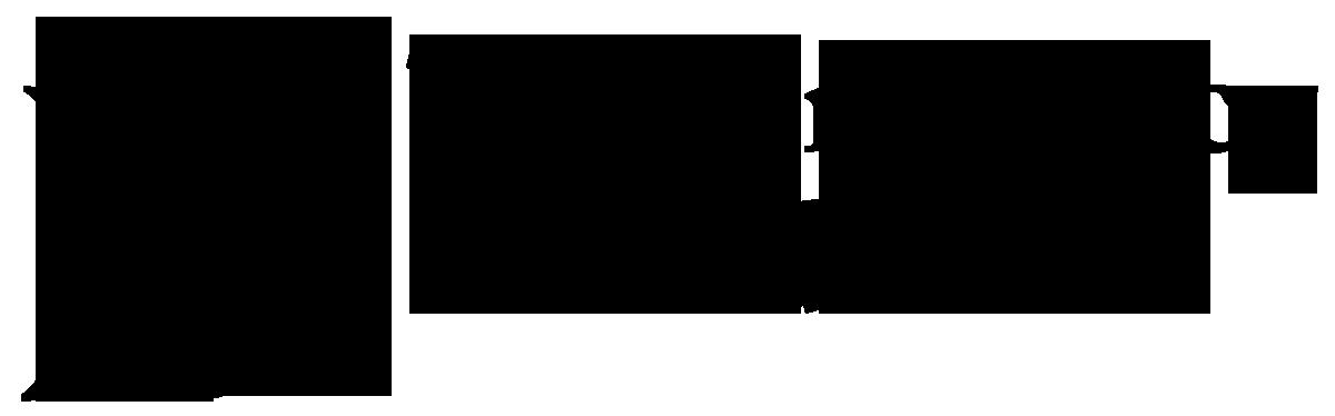 The Ann Lacy Foundation Logo